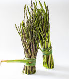 Asparagus na białym tle Obrazy Stock