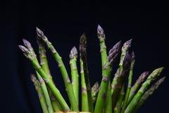 Asparagus na ciemnym tle Zdjęcie Stock