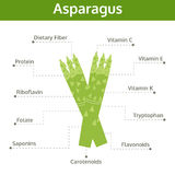 Asparagus nutrient of facts and health benefits, info graphic Royalty Free Stock Photos