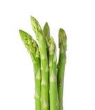 Asparagus odizolowywający na białym tle Obraz Royalty Free