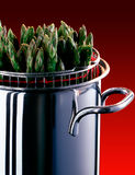 Asparagus Pot Royalty Free Stock Photos