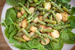 Asparagus, potatoes and spinach salad. On a chopping board Royalty Free Stock Photo