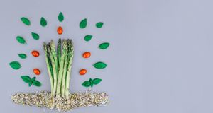 Asparagus with red tomatos and fresh basil. royalty free stock photos