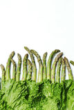 Asparagus and Romaine Lettuce in Unformed Pattern. Vertical photo stock images