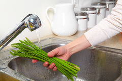 Asparagus in the sink Stock Image