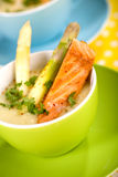 Asparagus soup with salmon Royalty Free Stock Photography