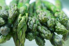 Asparagus spears. Close up of raw asparagus spears royalty free stock images