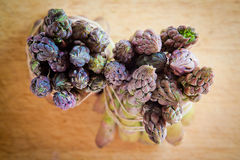 Asparagus spears Royalty Free Stock Photos