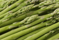 Asparagus spears. Closeup view of small asparagus spears stock images