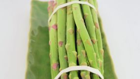 Asparagus in studio stock video