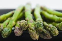 Asparagus Tips Stock Photography