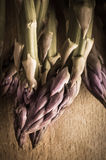 Asparagus Tips - Vintage Stock Image