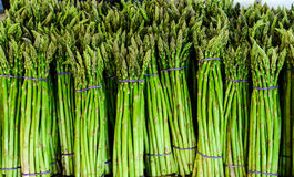 Asparagus  in vegetable market for sale Royalty Free Stock Image