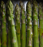 Asparagus in water royalty free stock photography