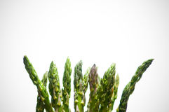 Asparagus on White Royalty Free Stock Images