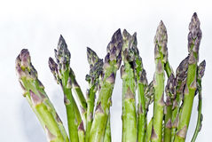 Asparagus on white. Bunch of asparagus on white Royalty Free Stock Photo