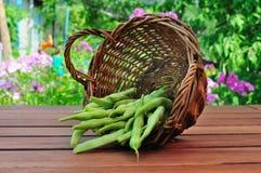 Asparagus in a wicker Stock Photos