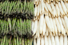 Asparaguses Royalty Free Stock Images
