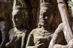 Asparas och devatas, inom spetälskkonungen, stenar att snida av Angkor Wat Royaltyfri Foto