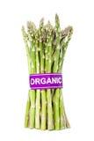Aspargo orgânico certificado Imagem de Stock Royalty Free