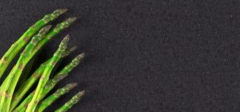 Aspargo realístico dos vegetais ilustração do vetor
