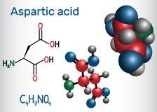 Aspartic syrligt l aspartic syra, egyptisk huggorm, D, proteinogenic aminosyramolekyl för aspartate Strukturell kemisk formel och vektor illustrationer