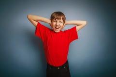 Aspecto europeo del adolescente del muchacho en una camisa roja Fotos de archivo