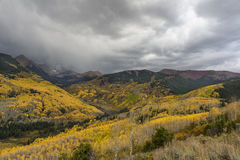Aspen-Bäume auf den Berghängen von Colorado-Berg im Sturm Lizenzfreies Stockfoto