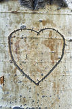 Aspen Bark Heart royaltyfria bilder