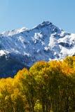 Aspen Below Snow Covered Peaks d'or dans Rocky Mountains de photographie stock