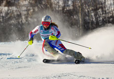 Aspen, CO - Nov 27:Anne-Sophie Barthet at the Audi Stock Image