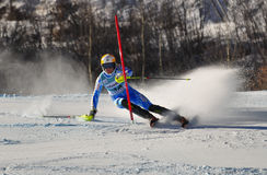 Aspen, CO - Nov 27: Frida Hansdotter at the Audi Q Stock Photo