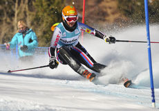 Aspen, CO - Nov 27: Katerina Paulatova at the Audi Stock Image
