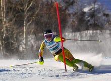 Aspen, CO - novembro 27: Elli Terwiel no Audi Quatt Fotos de Stock