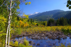 Aspen Colorado Photo libre de droits