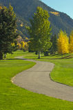 Aspen Golf Course with Pines Stock Photography