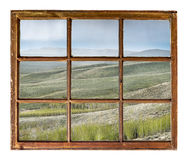 Aspen grove in rain window view Stock Images