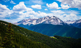 Aspen Highlands Summer Mountain scape Royalty Free Stock Image