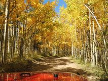 Aspen, le Colorado Photo stock
