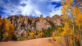 Aspen Leaves Changing i berg Fotografering för Bildbyråer