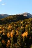 Aspen Mountain Morning Stock Images