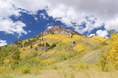 Aspen with mountain Stock Photos