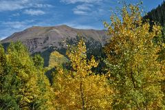 Aspen Mountainview Στοκ Εικόνες