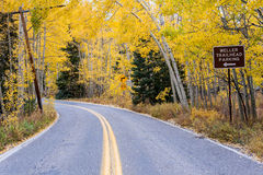 Aspen Road in autumn color Stock Photography