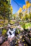 Aspen Stream Stock Photos