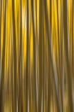 Aspen Tree Abstract-motieonduidelijk beeld Royalty-vrije Stock Afbeeldingen