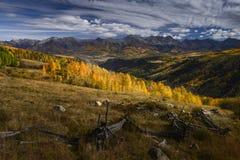 Aspen Trees dans la couleur d'automne près du MESA de soleil Image stock