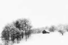 Aspen trees and old cottage in winter. Abstract composition with aspen trees and cottage in winter in the mountains Royalty Free Stock Photos