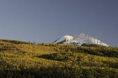 Aspen Trees Surround Chair Mountain in de Herfst Stock Foto