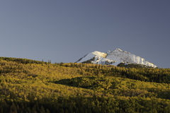 Aspen Trees Surround Chair Mountain no outono Foto de Stock